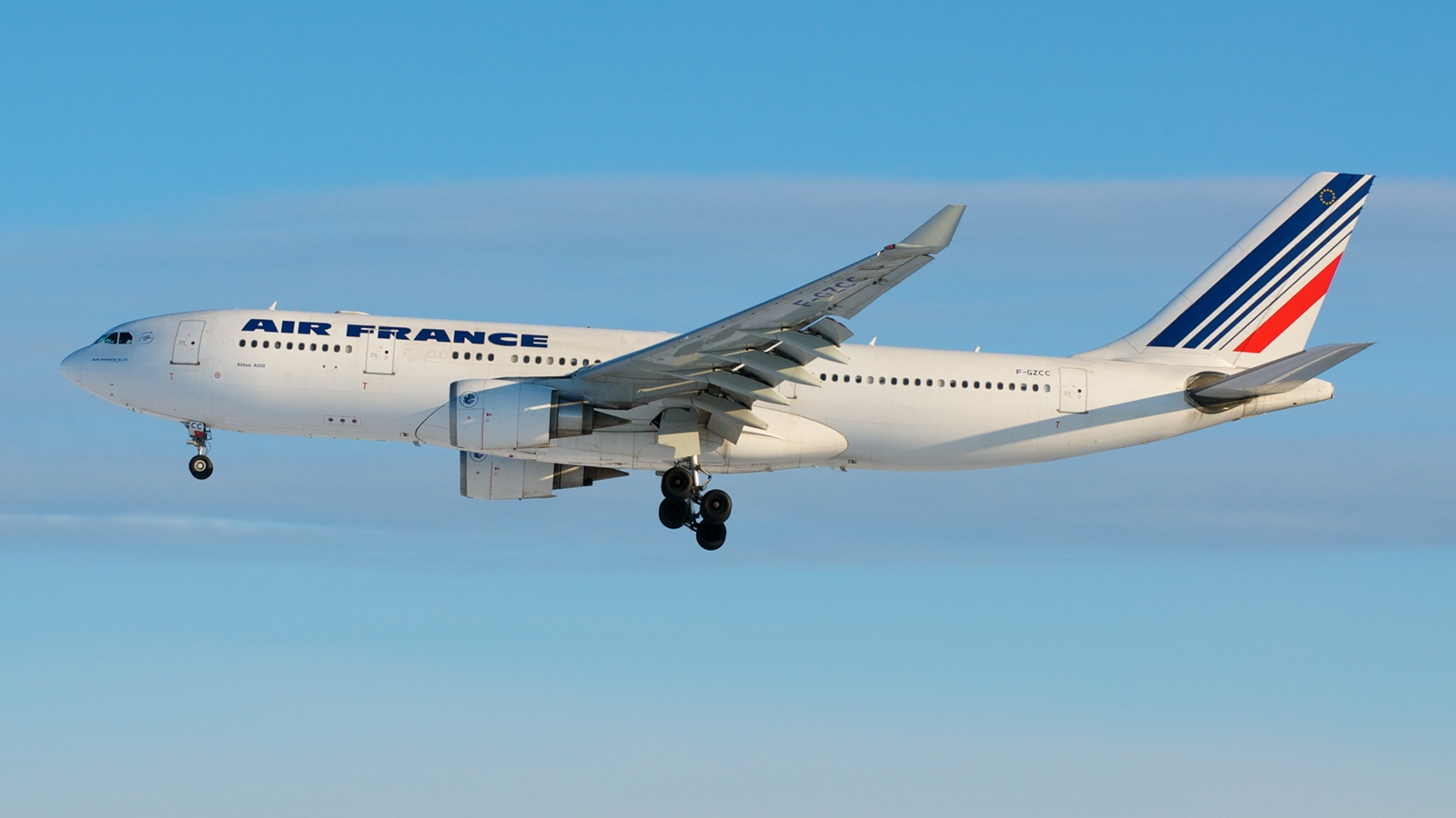 air france crash a result of ignored alarms