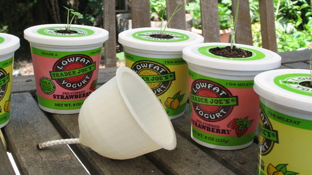 Click here to read Make a Yogurt Cup Self Irrigating Planter with a 3D Printer
