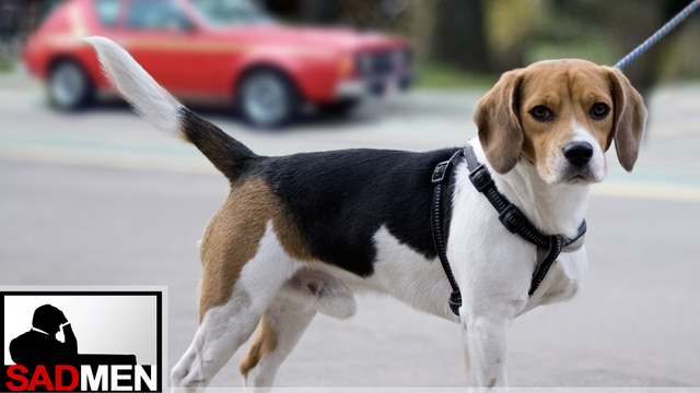 The Three-Legged Dog Effect: How Working Ad Accounts Is Like Moderating Olbermann-Limbaugh