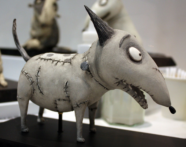 Tim Burton shows his childhood scars in Frankenweenie