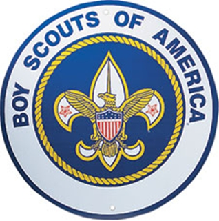 Boy Scouts: Gay Ban 'Best Policy' for BSA