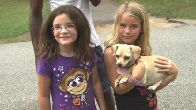 Heroic Chihuahua Finds Two Little Girls Lost In Georgia Woods