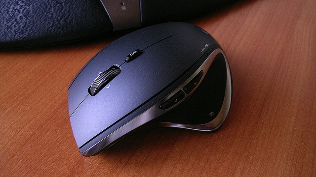 Click here to read Most Popular Desktop Mouse: Logitech Performance Mouse MX/MX Revolution