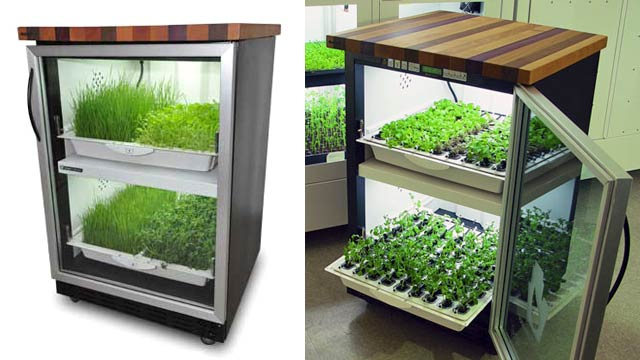 Indoor hydroponic herb garden australia download aquaponics plans hydroponic garden blends into your kitchen for year round herbs workwithnaturefo