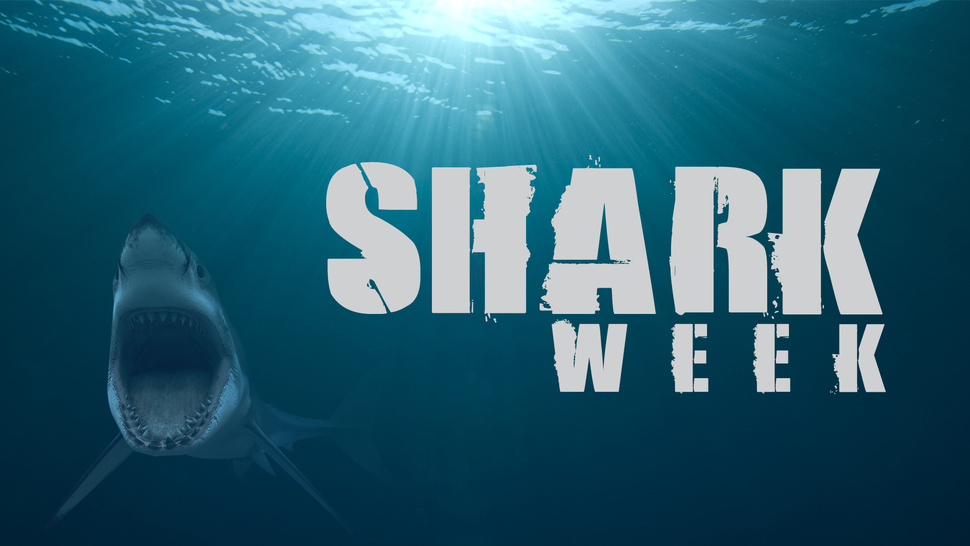 Dr. Ruth says Shark Week is ruining your sex life