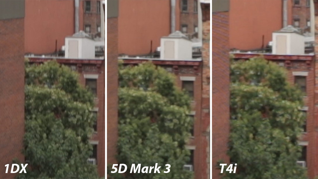 Canon DSLR Video Compared: 1DX vs 5D Mark III vs T4i