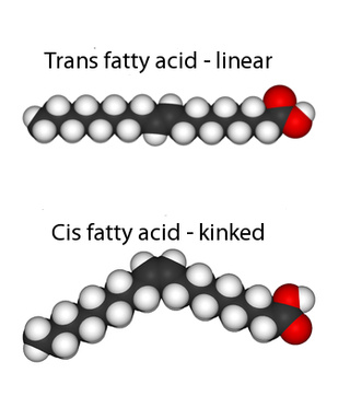 Trans fats and the chemistry of evil