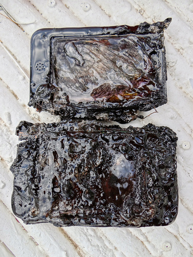 Let's All Watch a Nintendo 3DS Melt in a Microwave. Then Turn up on Ebay For $2241.