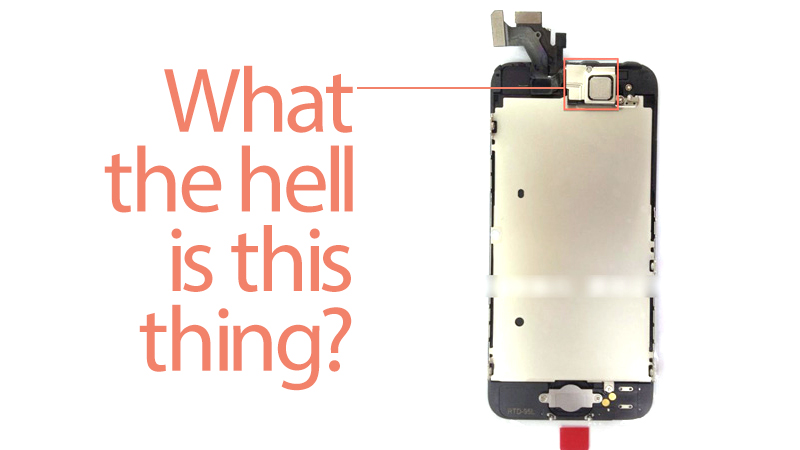 Click here to read What's That Mysterious Metal Square On the Top of the iPhone 5?