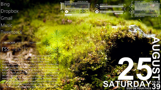 The Mossy Desktop