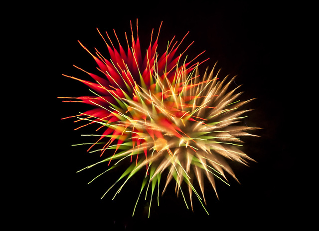 All Fireworks Should Look as Spectacular as This