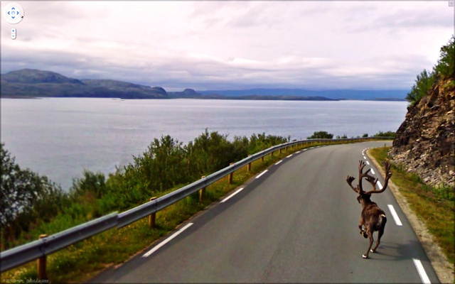 The Funniest Pictures Found on Google Street View