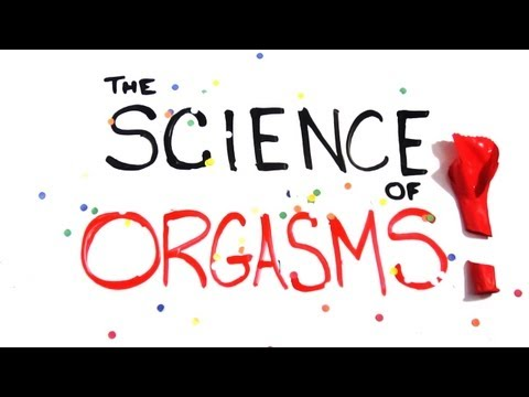 Click here to read The Science of Orgasms