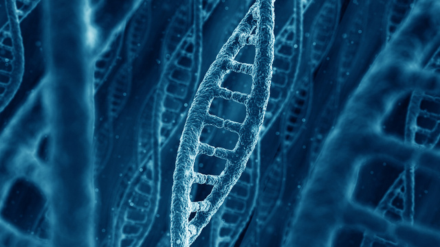 The Human Genome Is Far More Complex Than Scientists Thought