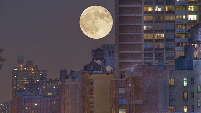 Has the Moon created the world's most enduring optical illusion?