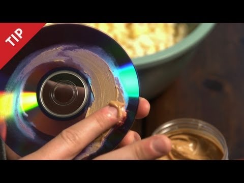 Click here to read Fill Disc Scratches with Peanut Butter