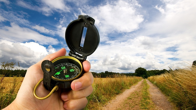 Shockingly, Undeserved Praise Improves Men's Navigation Skills