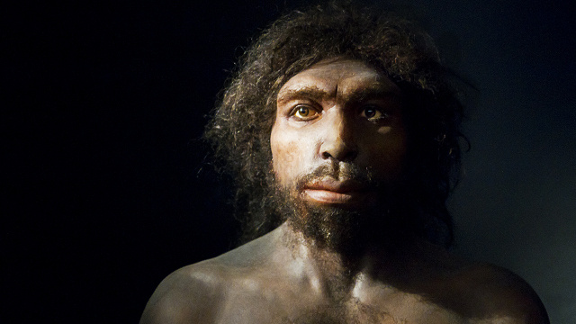 The Reason Early Humans May Have Practiced Infant Cannibalism
