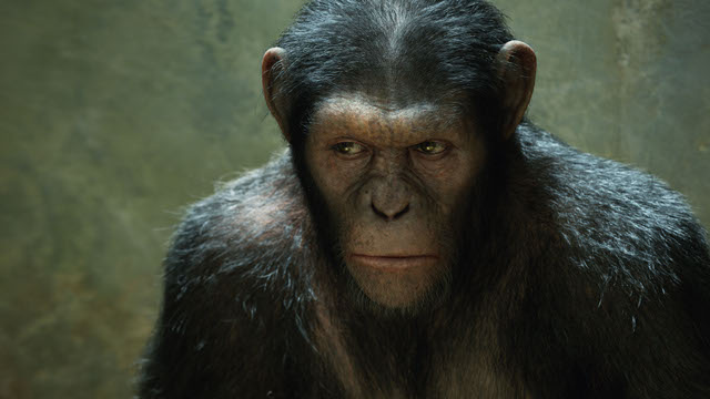Scientists make monkeys smarter using brain implants. Could you be next?