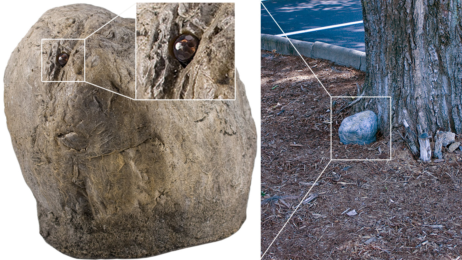 Rock Camera Surveillance : 13 hidden spy cameras that could be watching you right now gizmodo