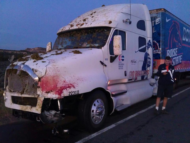 A Boise State Equipment Truck Hit A Cow, And Someone Took A Picture Of The Aftermath [UPDATE]