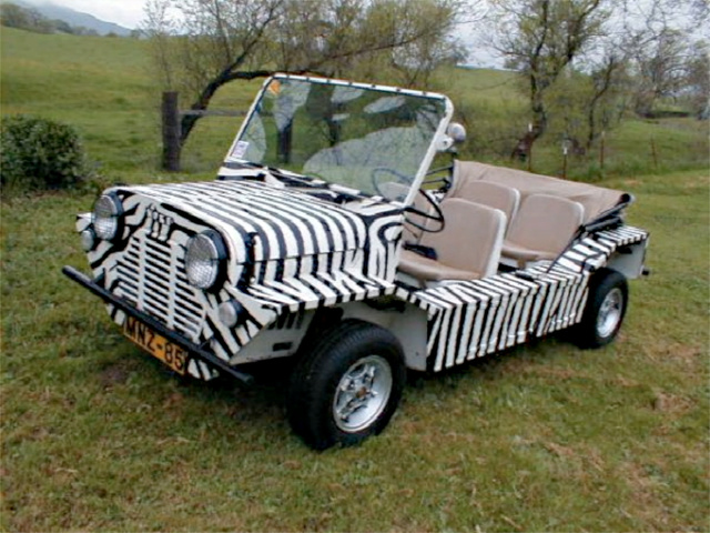 For $19,900, Be A Moke