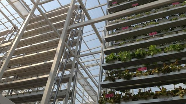 World's first commercial vertical farm opens in Singapore