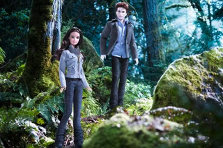 The Truly Terrible Twilight Merchandise