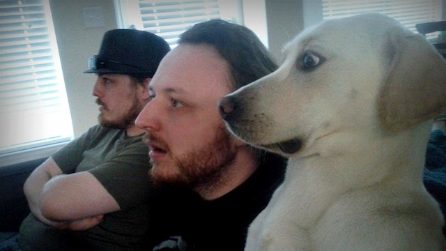This Dog Does Not Like Skyrim's Dragons