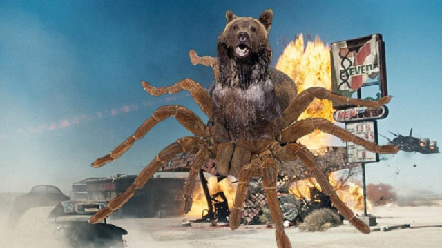 Syfy's next hybrid monster should be Bearantula!