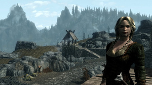 This Ambitious Custom Skyrim Follower Embodies Everything Great About Modding