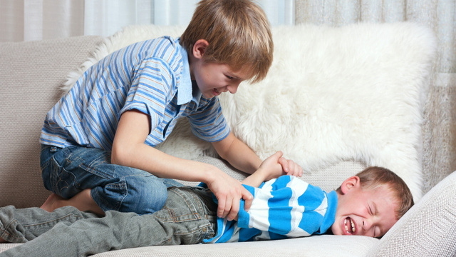 Historical data reveals that having an older sibling can wreck your life