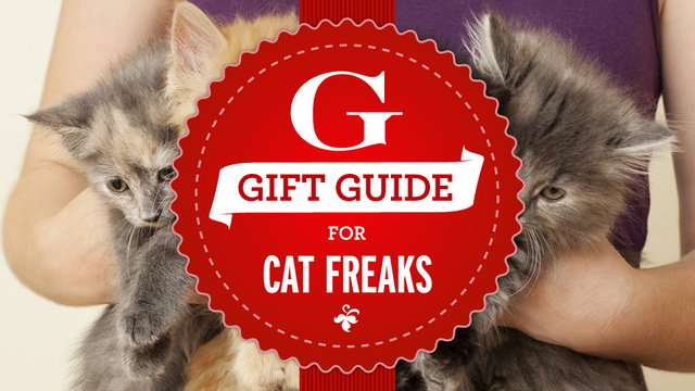Gift Guide Roundup: Gifts for People Who Instagram Their Cats