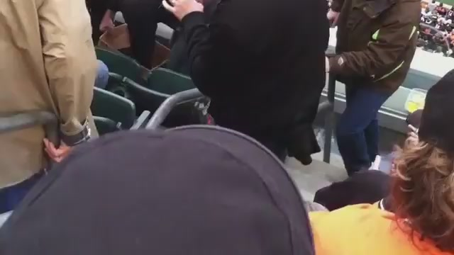 Raccoon Caught Scavenging In The Stands Of Paul Brown Stadium
