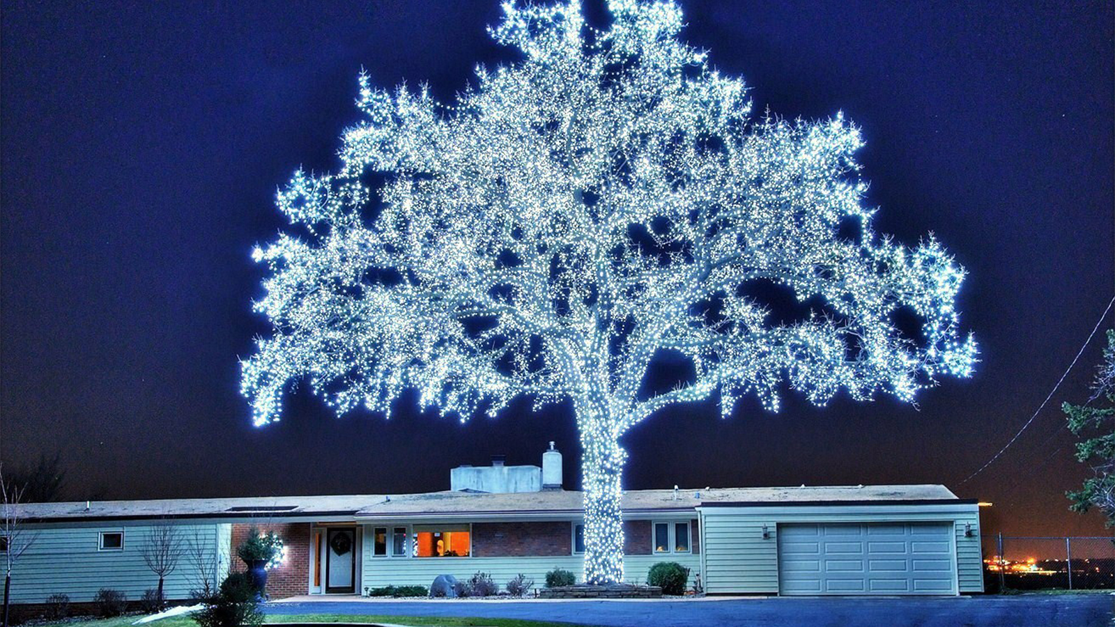 Is This The Most Over-The-Top Christmas Tree Ever?