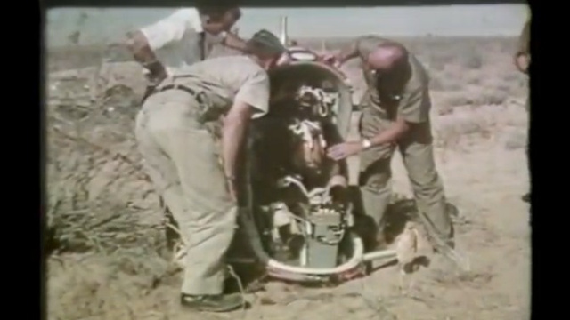 Click here to read The Air Force Used to Test Supersonic Ejector Seats with Drugged-Up Bears
