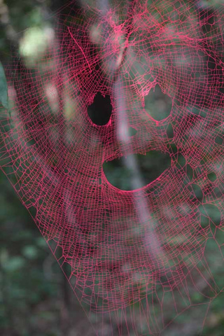 These colorful sculptures are actually painted spider webs