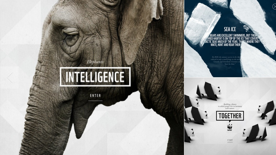 New iPad Apps: WWF Together, Fridge Words | Gizmodo Australia