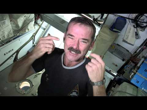 Click here to read How Astronauts Trim Their Nails in Zero-G