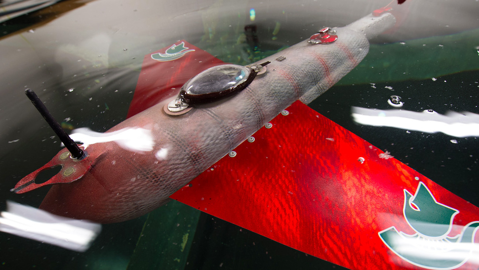 Great, Researchers Give This Creepy Cyborg Fish the Ability To Swim Forever