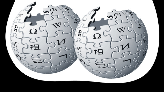 Wikipedia's Editors Are 91 Percent Male Because Citations Are Stored in the Ball Sack