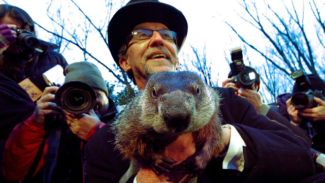 Punxsutawney Phil Determines That Pagan Animal Worship Is Alive and Well