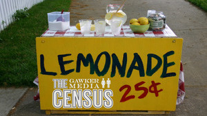 Hoons and…Entrepreneurs? Take the 2011 Gawker Media Census and Win an iPad 2