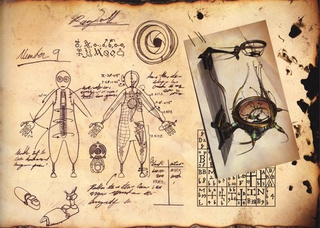 Crack Open 9's Science Journal And Learn Secrets Of The Ragdolls' Creation