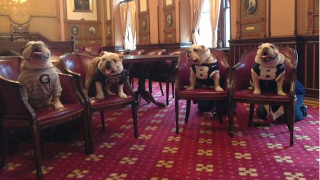 This Photo Of The Georgetown And Butler Bulldogs Is Just The Cutest Goddamn Thing