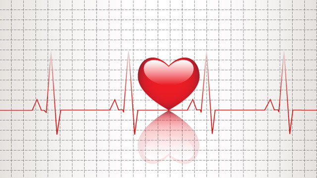 Click here to read How Many Heartbeats Does Each Species Get in a Lifetime?