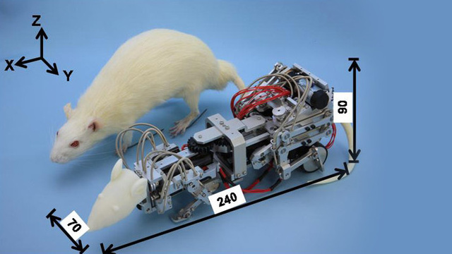 This Robotic Mouse Was