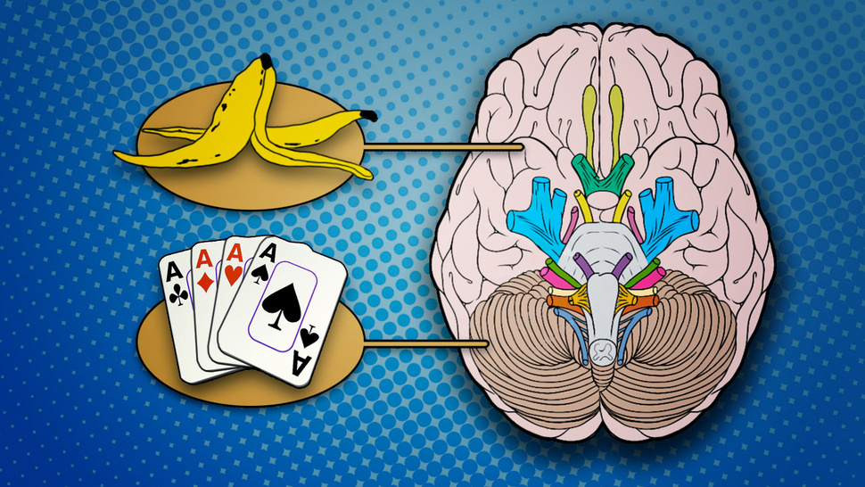Tricks Your Left Brain is Playing On You (And What You Can Do About It)