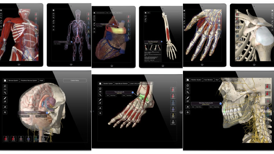 New iPad Apps: America\'s Presidents, Essential Anatomy, And More ...
