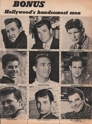 Hollywood Hunks From The 1950s